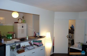 appartement 2 pieces maisons-alfort 94700 2
