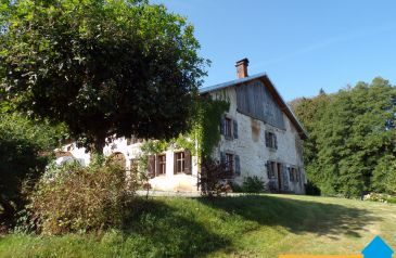 maison 8 pieces la-chapelle-devant-bruyer 88600 2