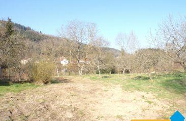terrain 0 pieces ban-sur-meurthe-clefcy 88230