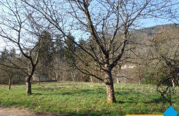 terrain 0 pieces ban-sur-meurthe-clefcy 88230 2